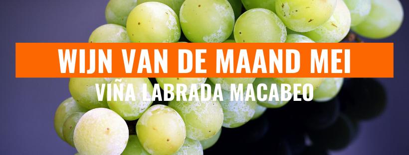 Wijn van de maand mei: Vina Labrada Macabeo