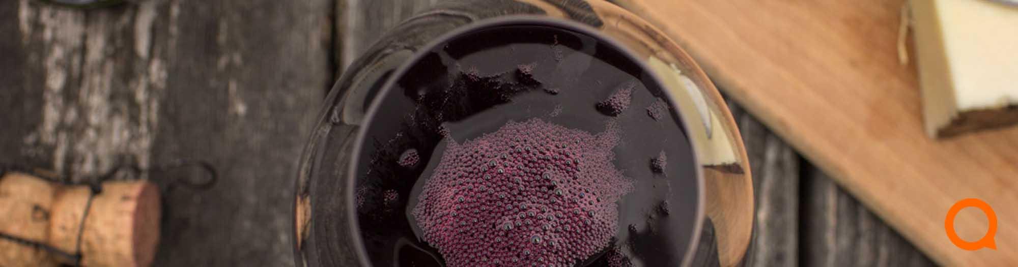 Lunch wijnen