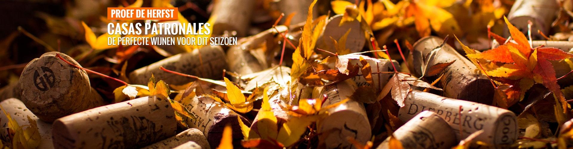 Proef de herfst